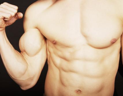 El crecimiento muscular y el culturismo
