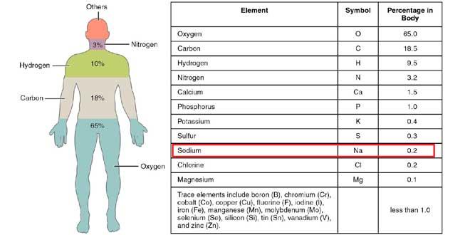 Tabla minerales en el organismo
