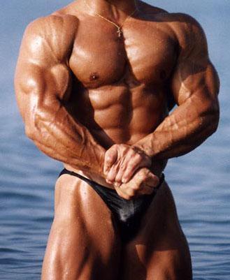 crecimeinto muscular
