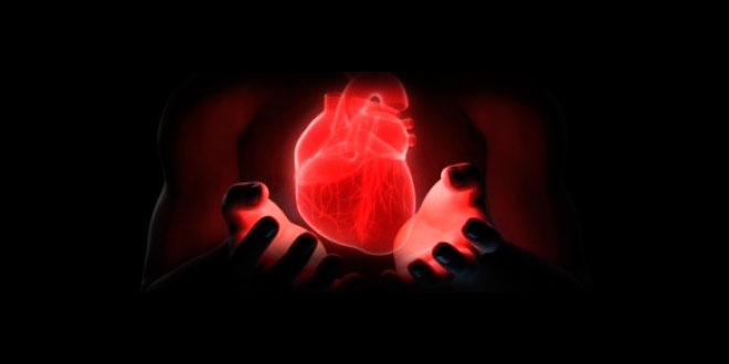 salud-cardiovascular