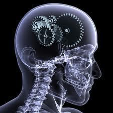 Fosfatidilserina ayuda a tus funciones cerebrales