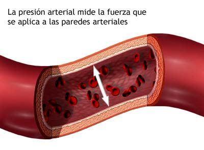 dieta e hipertensión