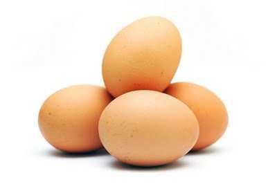 la asimilacion de la proteinas de huevo