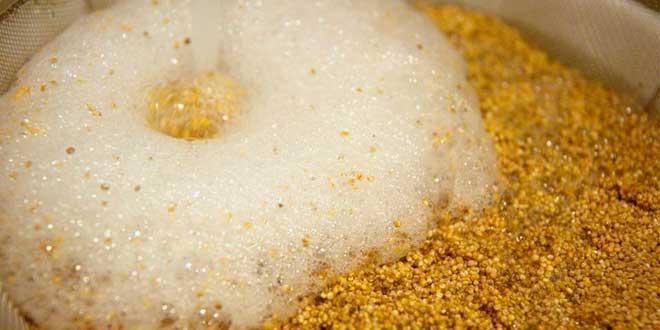 saponinas-quinoa