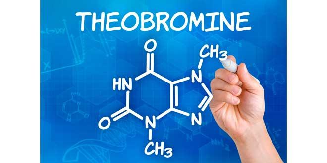 teobromina-metilxatina