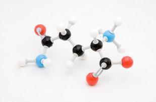 Ácido Glutámico y Glutamina