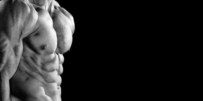 zinc-testosterona