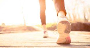 Pasos para reducir grasas