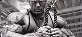 Protocolo HSN: Ganar músculo sin apenas grasa PARTE I
