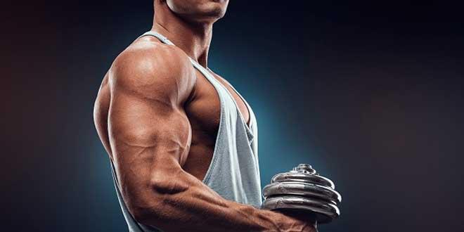 Protocolo HSN para Ganar Masa Muscular - Parte 1