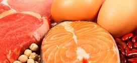 Efectos del consumo elevado de proteínas en una dieta