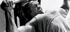 Gimnasio, testosterona y agresividad