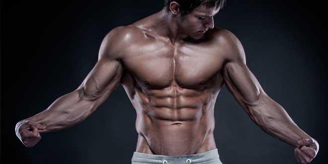Protocolo HSN para Ganar Masa Muscular - Parte 3
