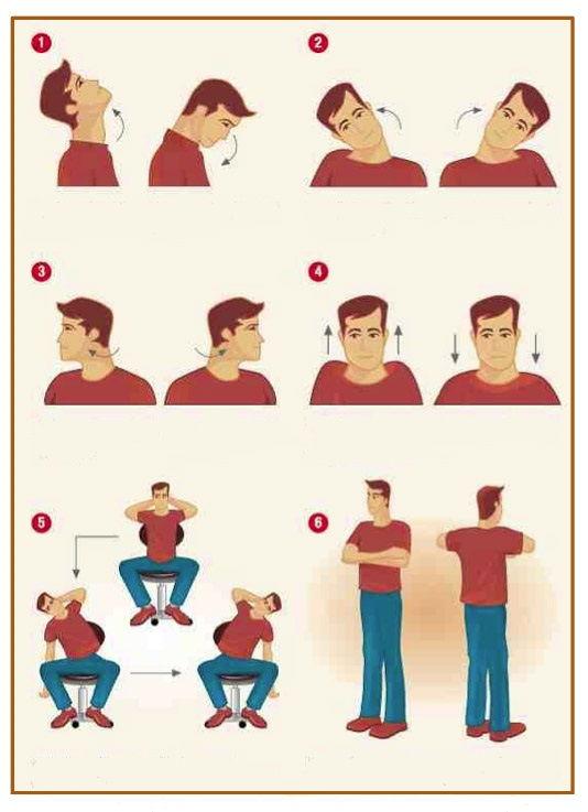 La importancia de los ejercicios posturales en la oficina for Ejercicios en la oficina