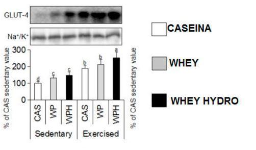 Comparativa de Proteínas