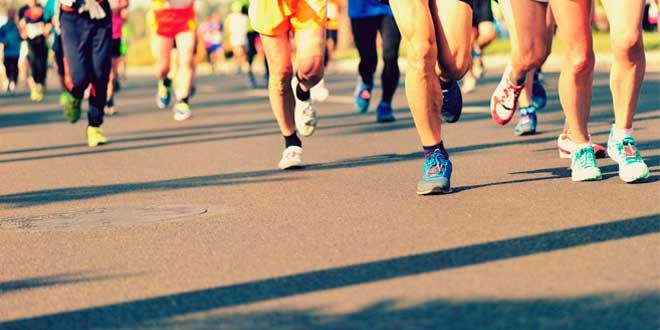 Glutamina y Deporte
