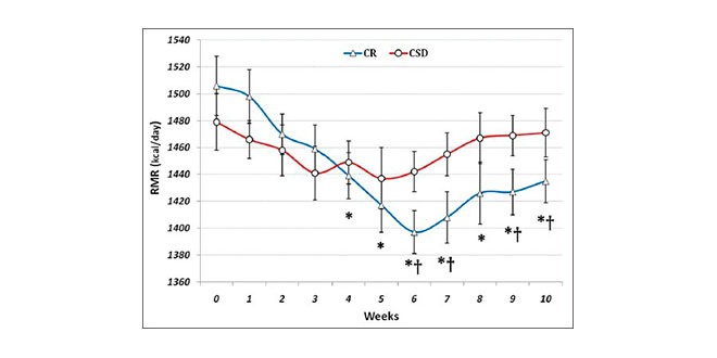dieta somanabolico maximizador de musculos pdf