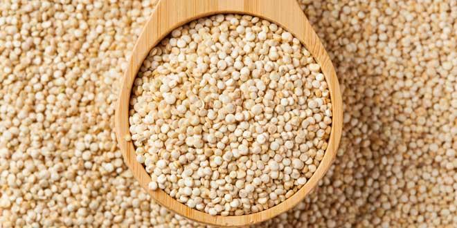 Quinoa - Proteína Vegetal