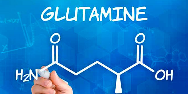 ¿Cómo tomar glutamina?