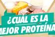 cual-es-la-mejor-proteina