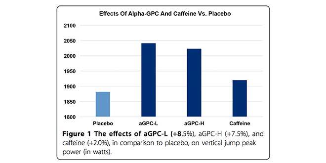 efectos-alfa-gpc