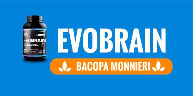 Bacopa Monnieri: Evobrain a fondo