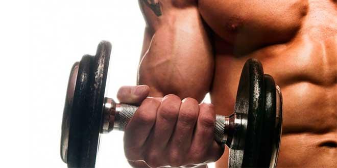 claves-crecimiento-muscular