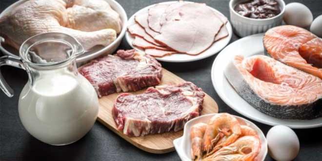Dieta Alta en Proteínas, ¿qué efectos nos aporta?