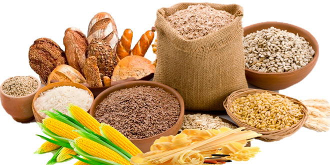 Alimentos ricos en carbohidratos - Alimentos hidratos de carbono ...