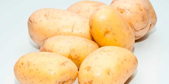 Alimentos ricos en carbohidratos - Q alimentos son proteinas ...