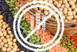 Proteínas vegetales para celiacos