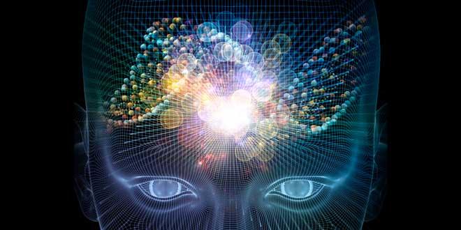 Nootrópicos y Cerebro