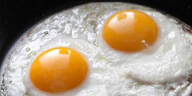 Resultado de imagen para ¿Cómo se aprovecha mejor la proteína del huevo?