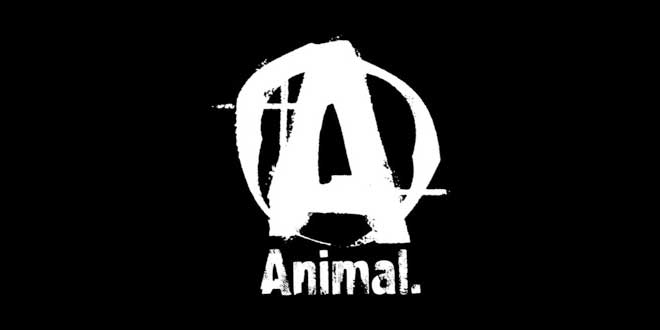 packs de Animal