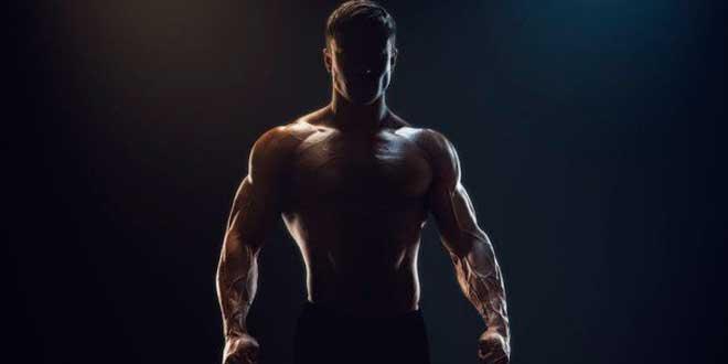 Miostatina: Cómo Bloquearla para Maximizar el Crecimiento Muscular