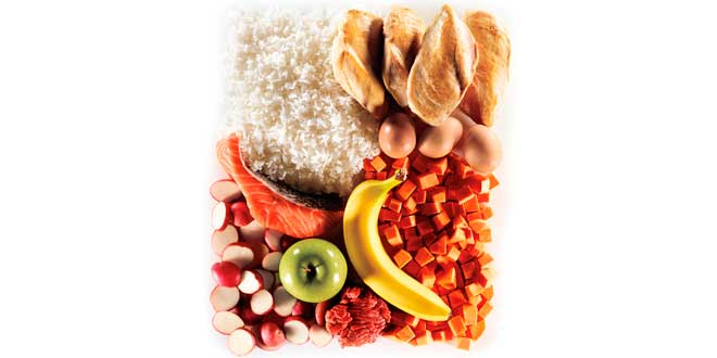 Dieta bloquear miostatina
