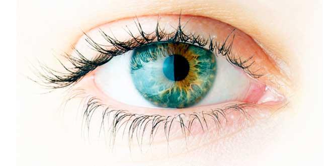 Omega 3 reduce la degeneración macular