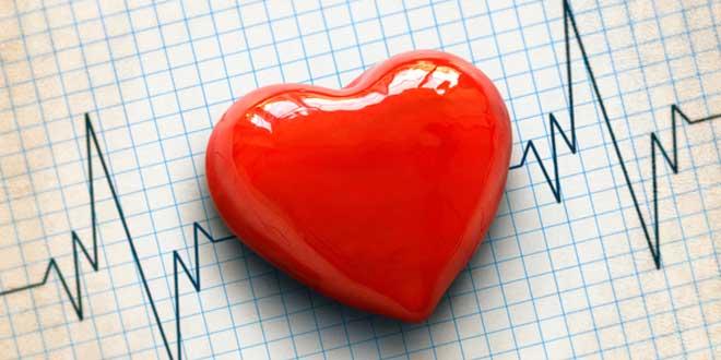 Potasio Regula los Latidos del Corazón