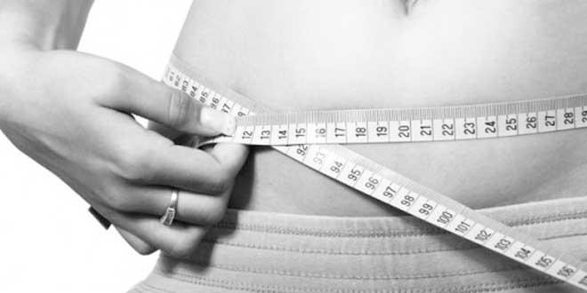 Batidos de Proteína para Perder Peso
