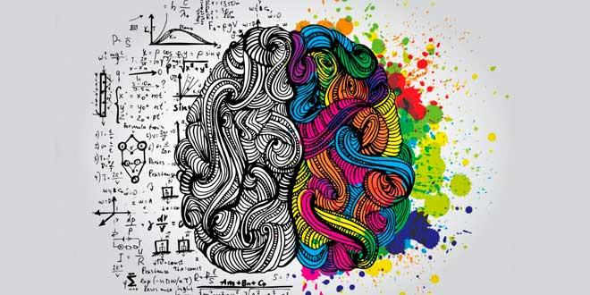 Colina e Inositol Capacidad Cognitiva