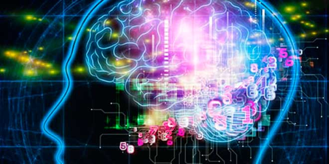 Evobrain para la Salud Cerebral