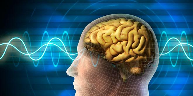 Nootropicos: qué son, tipos y qué efecto producen