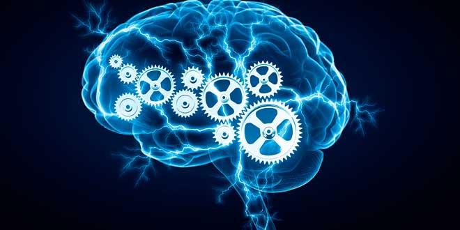 Tirosina Salud Cerebro