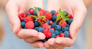 Top 10 Mejores Antioxidantes