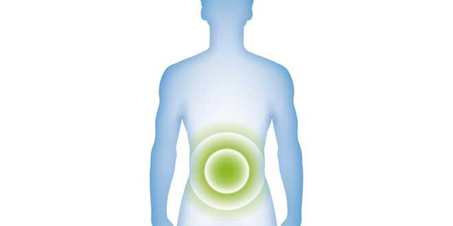 Mecanismos Accion Probioticos
