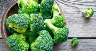 Propiedades y Beneficios del Brócoli