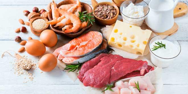 ¿Cuál es la Cantidad Óptima de Proteína para Ganar Muscular?