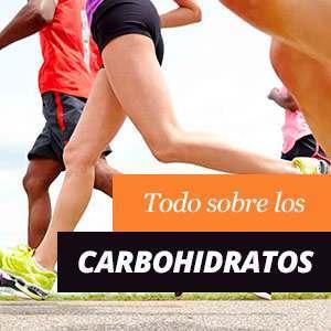 Qué son los carbohidratos
