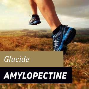 Amylopectine - Avantages et Propriétés
