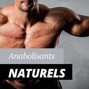 Anabolisants Naturels, Avantages et Propriétés